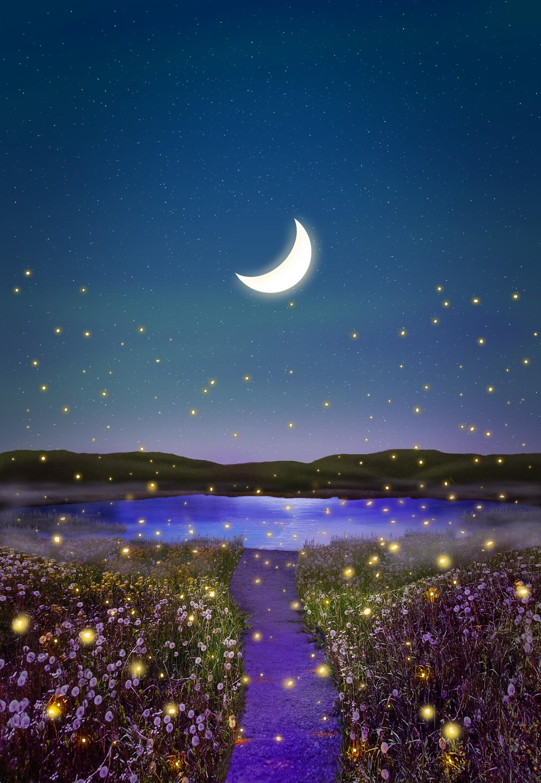 Moon and Fireflies Wallpaper